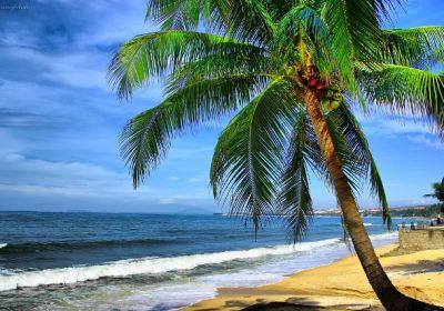 TP Hồ Chí Minh – Mũi Né – KDL Hòn Rơm –  Đồi Cát Bay – KDL Đại Nam 4 ngày