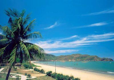 Du lịch Quy Nhơn – Bình Định 4 ngày 3 đêm
