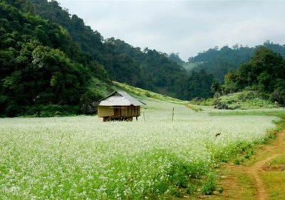 Mộc Châu – Thung Nai 2 ngày 1 đêm