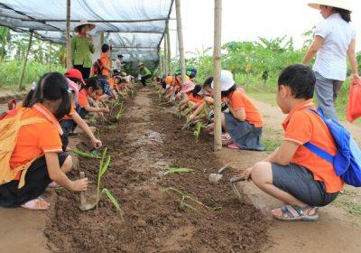 Một ngày làm nông dân – Trang trại giáo dục Erahourse 1 ngày