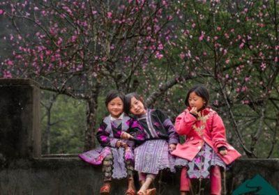 Du lịch Hà Giang – ngắm hoa đào, hoa mận 3 ngày 2 đêm