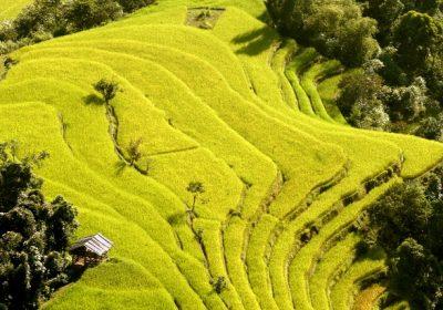 Lịch hoạt động tuần văn hóa du lịch Ruộng bậc thang Hoàng Su Phì 2015