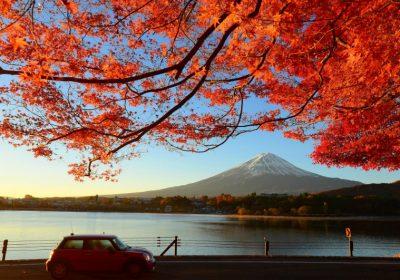 Nhật Bản mùa lá đỏ 5 ngày 4 đêm