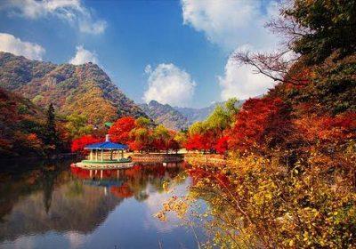 Seoul – Suwon – Everland – đảo Nami 5 ngày 4 đêm