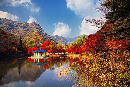 Vẻ đẹp mùa thu Hàn Quốc