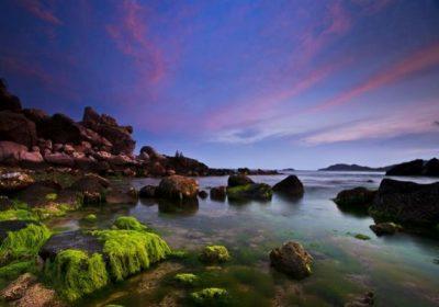 Ninh Chữ – Vịnh Vĩnh Hy – Đảo Bình Hưng 3 ngày 2 đêm